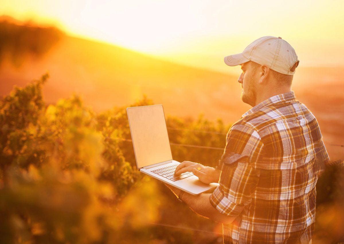 Rastreabilidade na agricultura e no campo